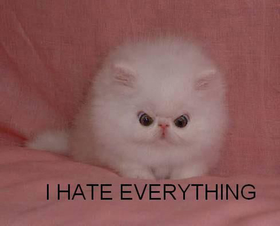 (We might have used this picture before, but I do not care that is how much I hate everything!)